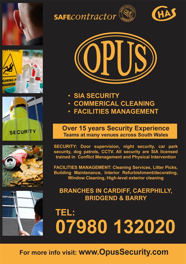 Flyer Design – Opus Security