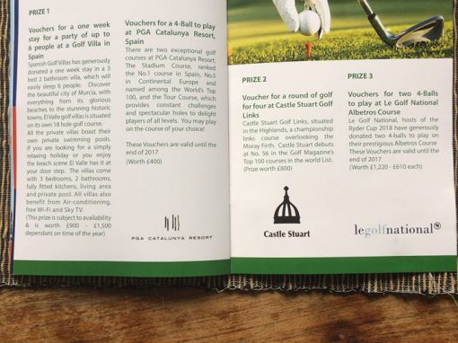 Brochure Design – Indaba